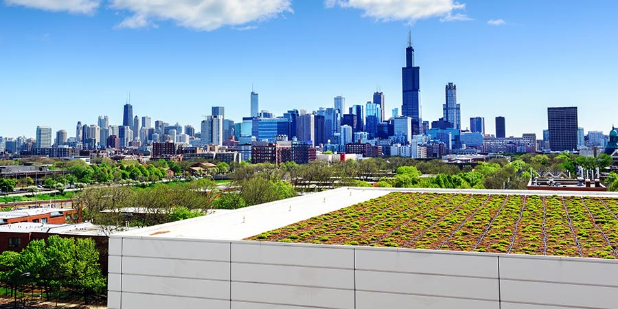 Top Questions To Ask When Designing A Green Roof Gcp